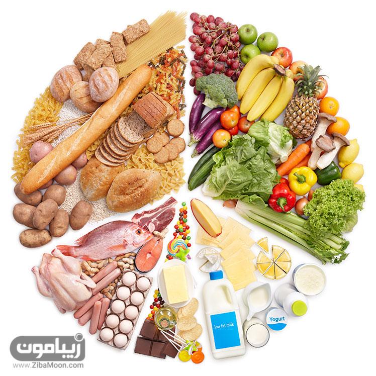 گروه های غذایی مختلف