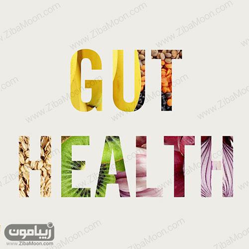رژیم غذایی Gut Health Diet Plan