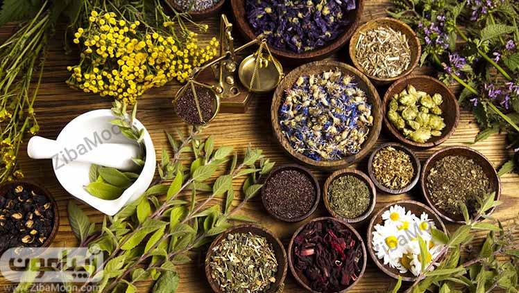 گیاهان طب سنتی دمنوش