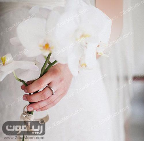 یک شاخه گل ارکیده سفید