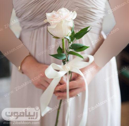 یک شاخه گل رز سفید برای عروس