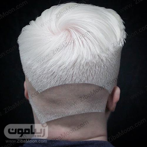 موی مردانه سفید دابل فید
