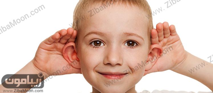 گوش بزرگ