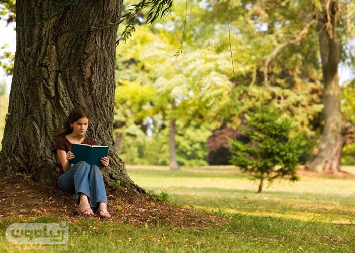 کتاب خواندن زیر درخت