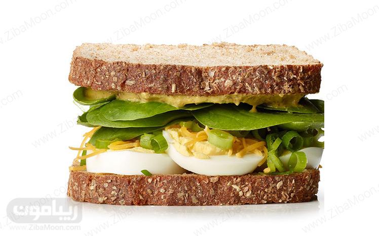 ساندویچ تخم مرغ