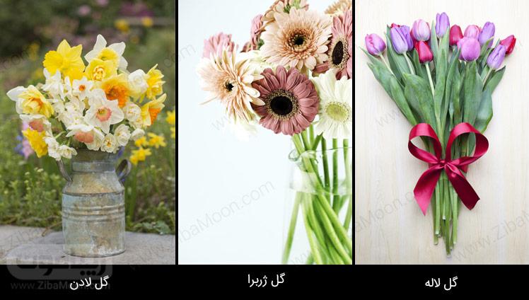 گل لادن، گل ژربرا، گل لاله