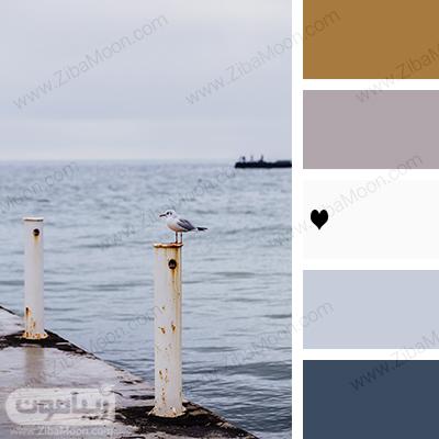 ترکیب رنگ های طبیعی در کنار رنگ سفید مرجانی