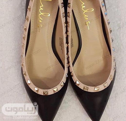 کفش زنانه مشکی نوک تیز از برند LULU'S