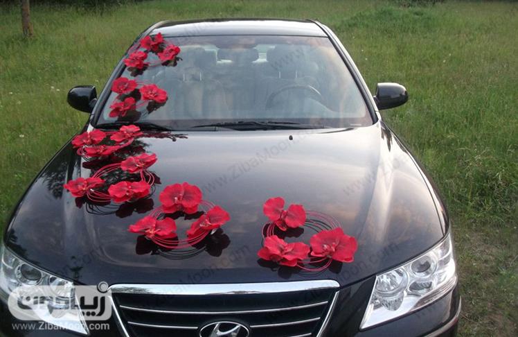 گل آرایی ارزان قیمت و شیک ماشین عروس