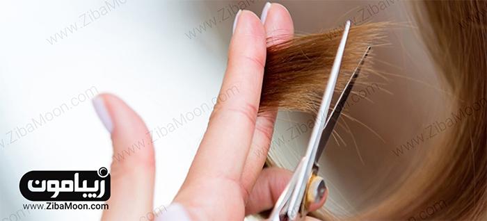 جلوگیری از مو خوره با حنا
