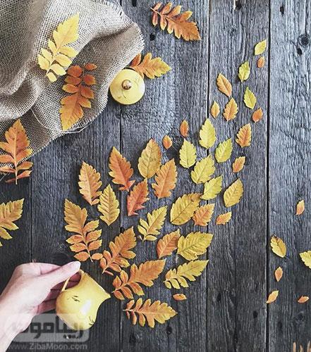 عکس یک برگ پاییزی برای پروفایل