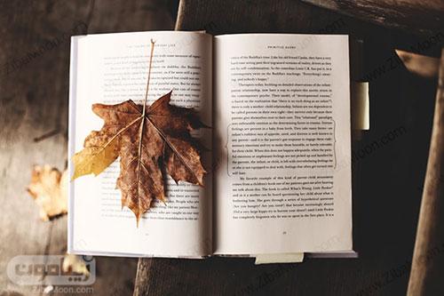 عکس یک برگ پاییزی روی کتاب برای تصویر زمینه پاییزی