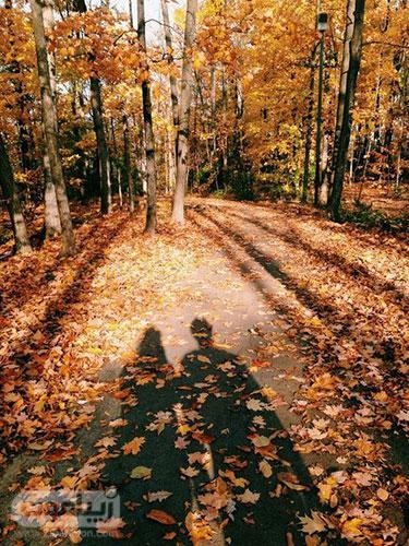 عکس طبیعت پاییزی با سایه دو نفره و عاشقانه