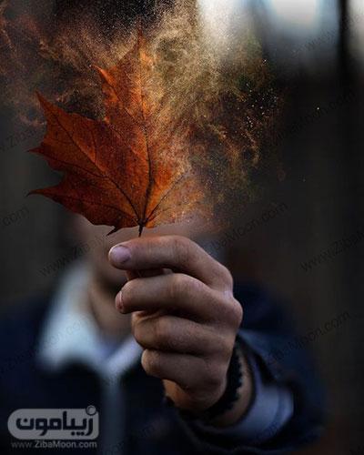 عکس پروفایل خاص با برگ پاییزی متفاوت