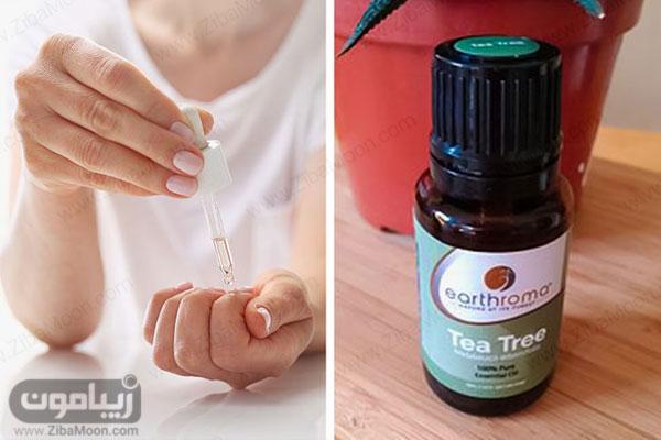 روغن درخت چای برای تقویت ناخن