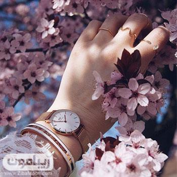 عکس پروفایل جذاب با شکوفه های بهاری