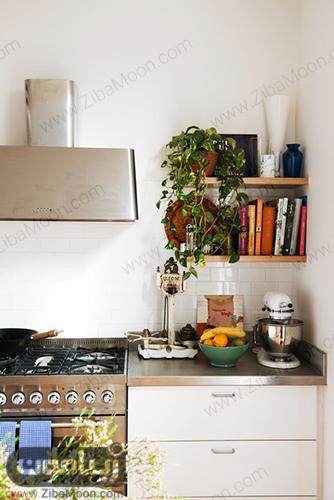 پوتوس در آشپزخانه
