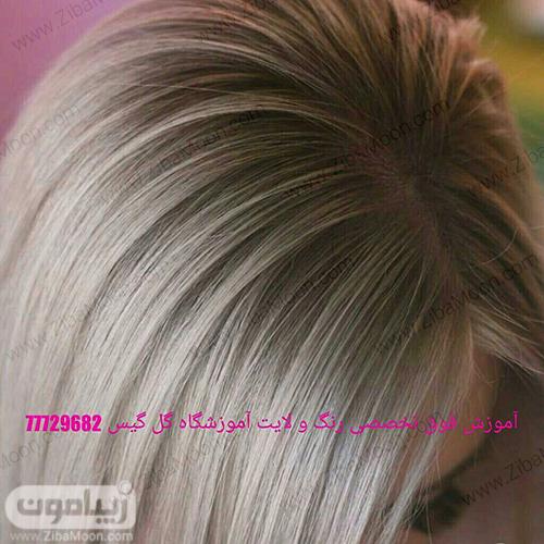 رنگ مو حرفه ای