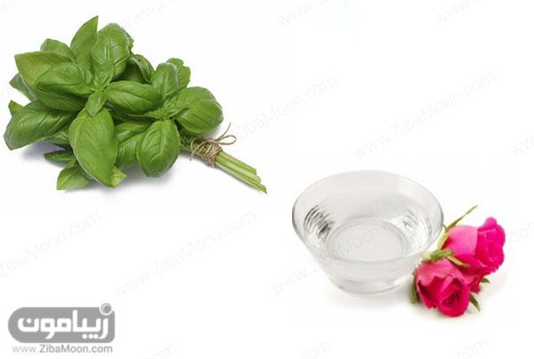 گلاب و ریحان