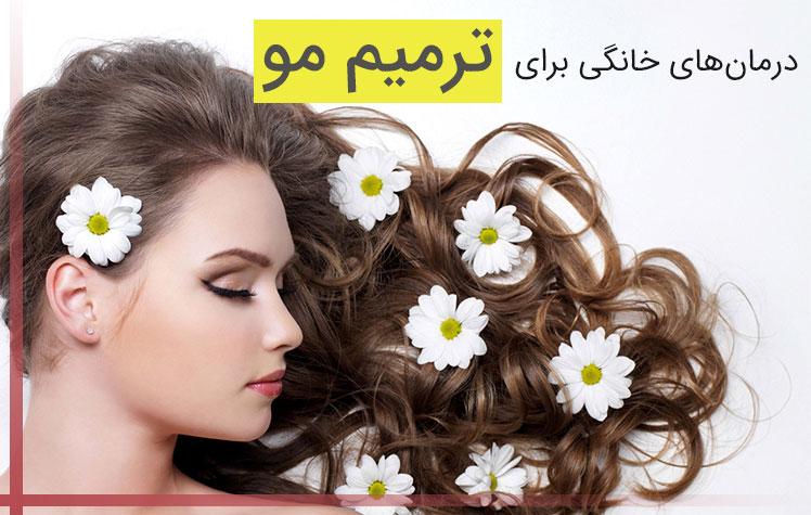 درمان های خانگی برای ترمیم مو