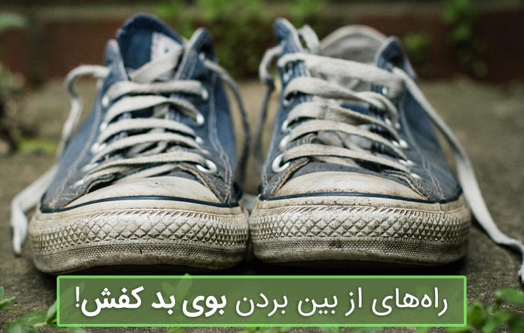 نکات مهم در مورد از بین بردن بوی کفش
