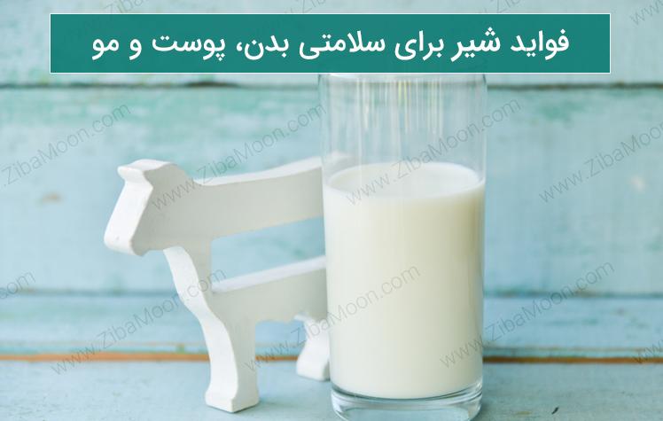 فواید شیر برای سلامتی بدن، پوست و مو