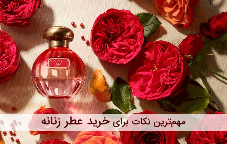 مهم ترین نکاتی که به هنگام خرید عطر زنانه باید به آن توجه کرد چیست؟